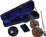 Steinbach SV-10034LH Linkshänder Geige Set 3/4 handgearbeitete Violinengarnitur inklusive Koffer und Bogen